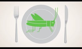 Video: Edible Insects: National Geographic's Future of Food