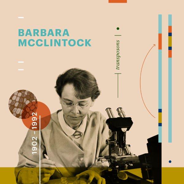 barbara_mcclintock.jpg