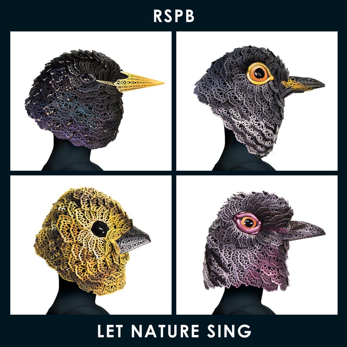 RSPB_LetNatureSing_Gorillaz®.jpg