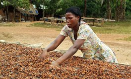 Artículo: Meet Vida, a Female Cocoa Farmer in Ghana Using Climate-Smart Methods to Preserve Forests