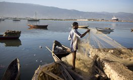 Artículo: Millions of People in Haiti Are Struggling to Eat, UN Warns