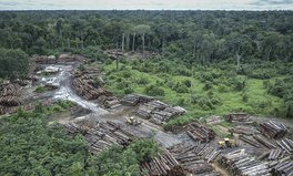 Artikel: Brazil's President Is Making It Impossible to Fight Deforestation, Activists Say