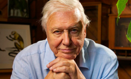 Article: 'We Cannot Be Radical Enough': David Attenborough Tells MPs to Take Action on the Climate Crisis