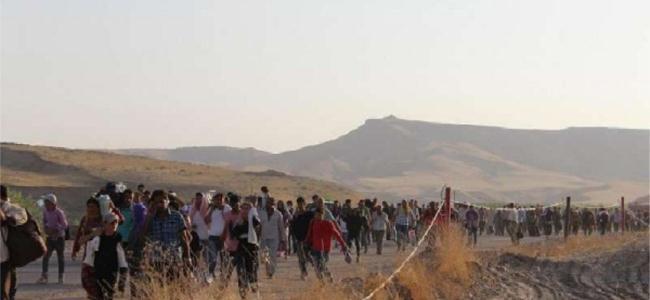 Line of refugees.jpg